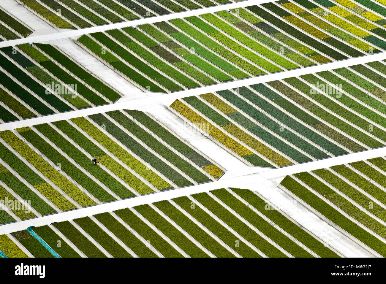 Aerial image of a plant nursery in Belgium - Stock Image