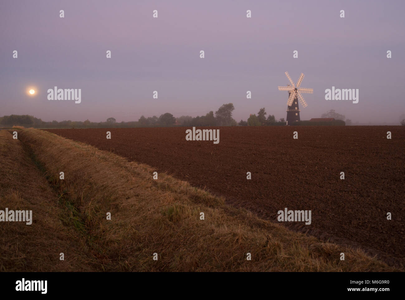 The moon setting besides Sibsey Trader Mill early in the morning after an eclipse., - Stock Image