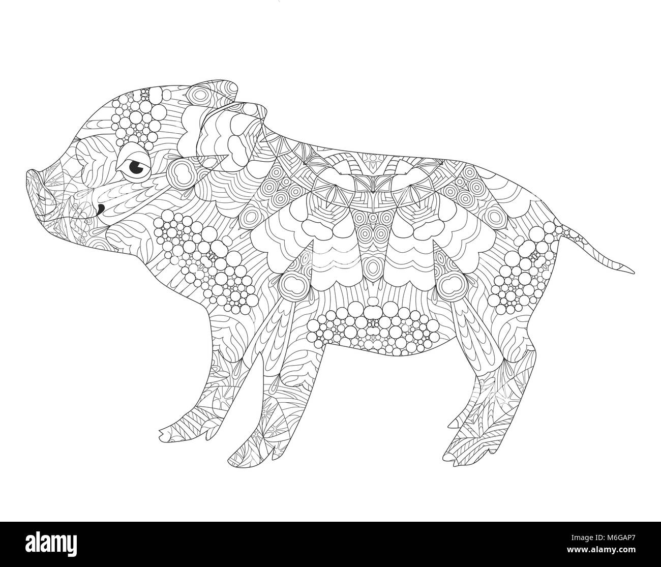 Zentangle Illustration With Pig Zen Tangle Or Doodle Piglet Coloring Book Domestic Animal