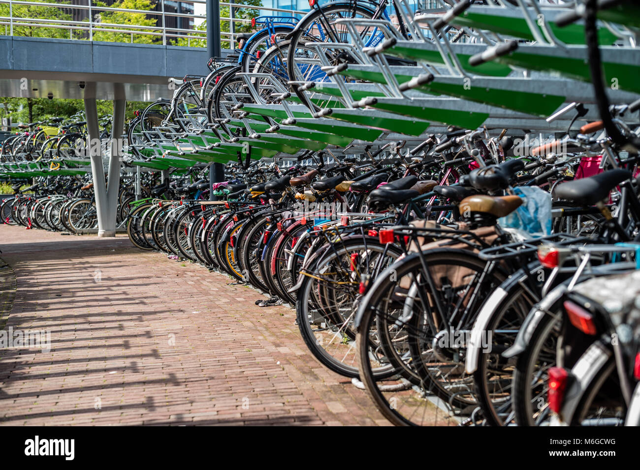 The bicycles parking - Stock Image