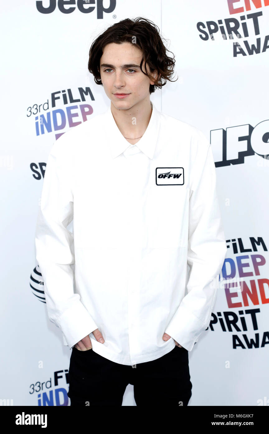 Timothee Chalamet attending the 33rd annual Film Independent Spirit Awards 2018 on March 3, 2018 in Santa Monica, - Stock Image