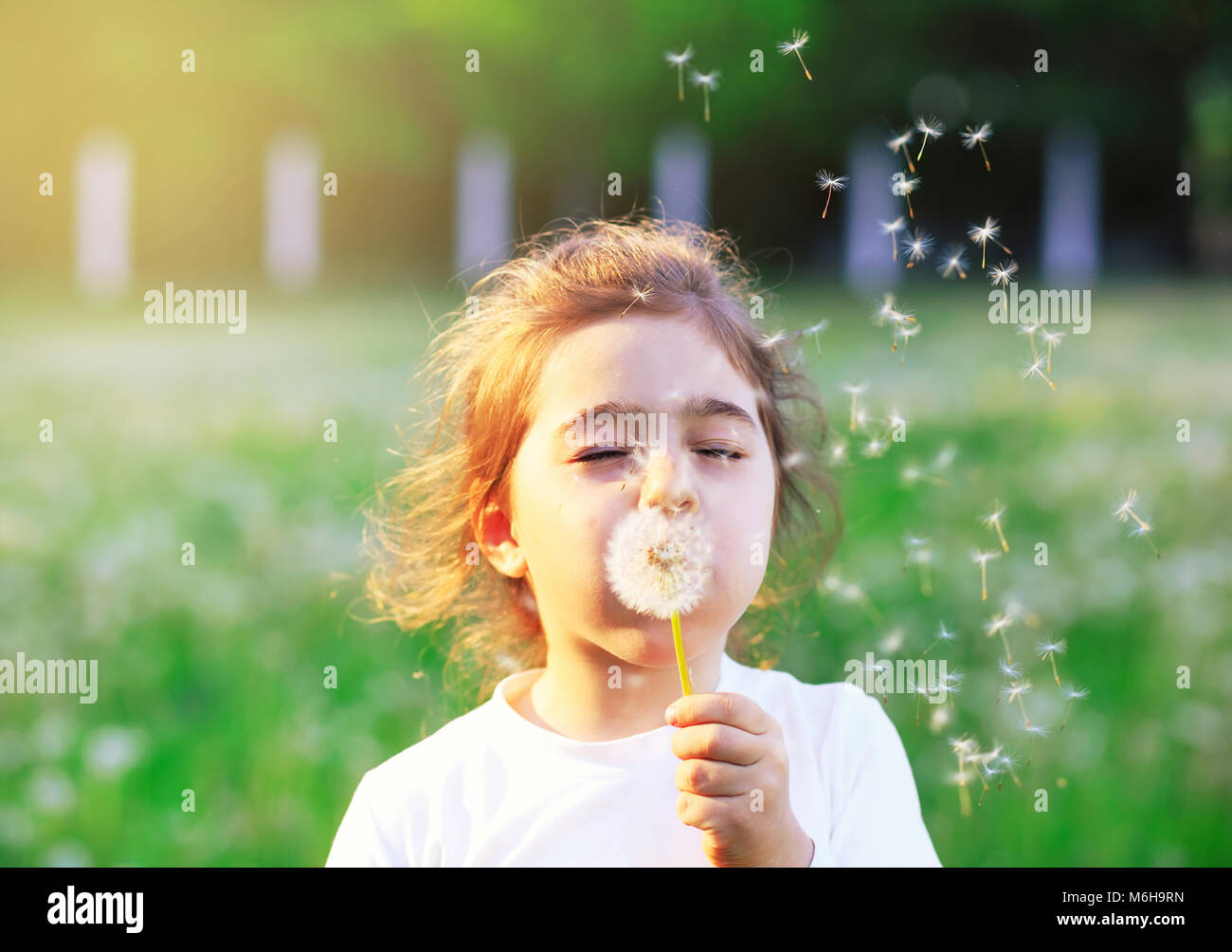Beautiful little Girl blowing dandelion flower in sunny summer park. Happy cute kid having fun outdoors at sunset. - Stock Image