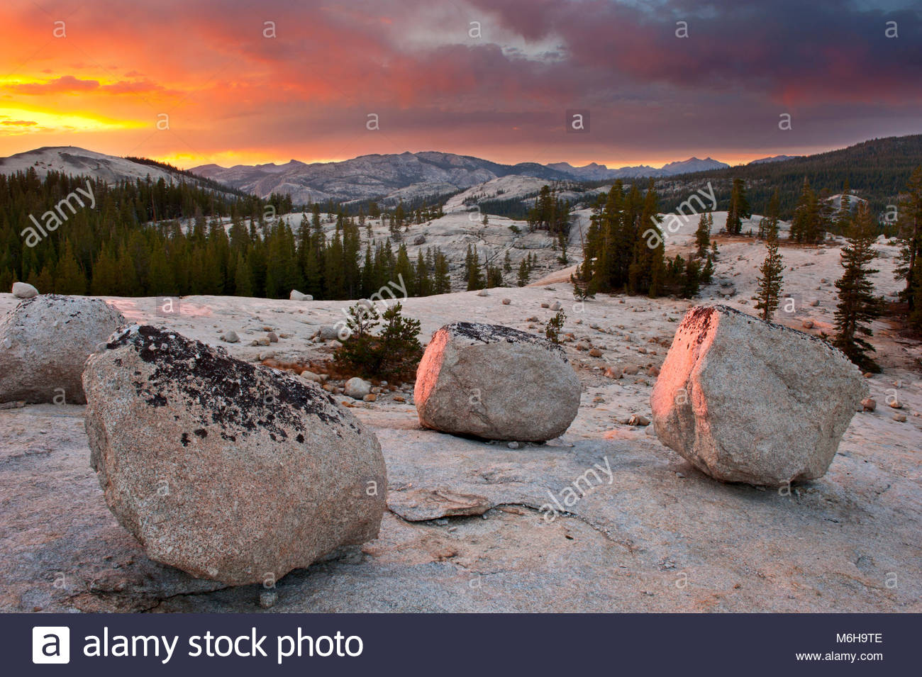 Boulders at Sunset near Tuolumne Meadows, Yosemite National Park, California - Stock Image