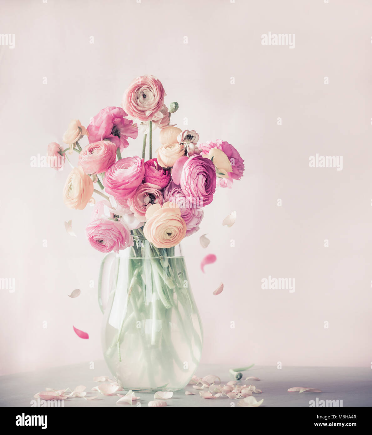 Pastel color ranunculus flowers bouquet with falling petals in glass vase on table, front view - Stock Image