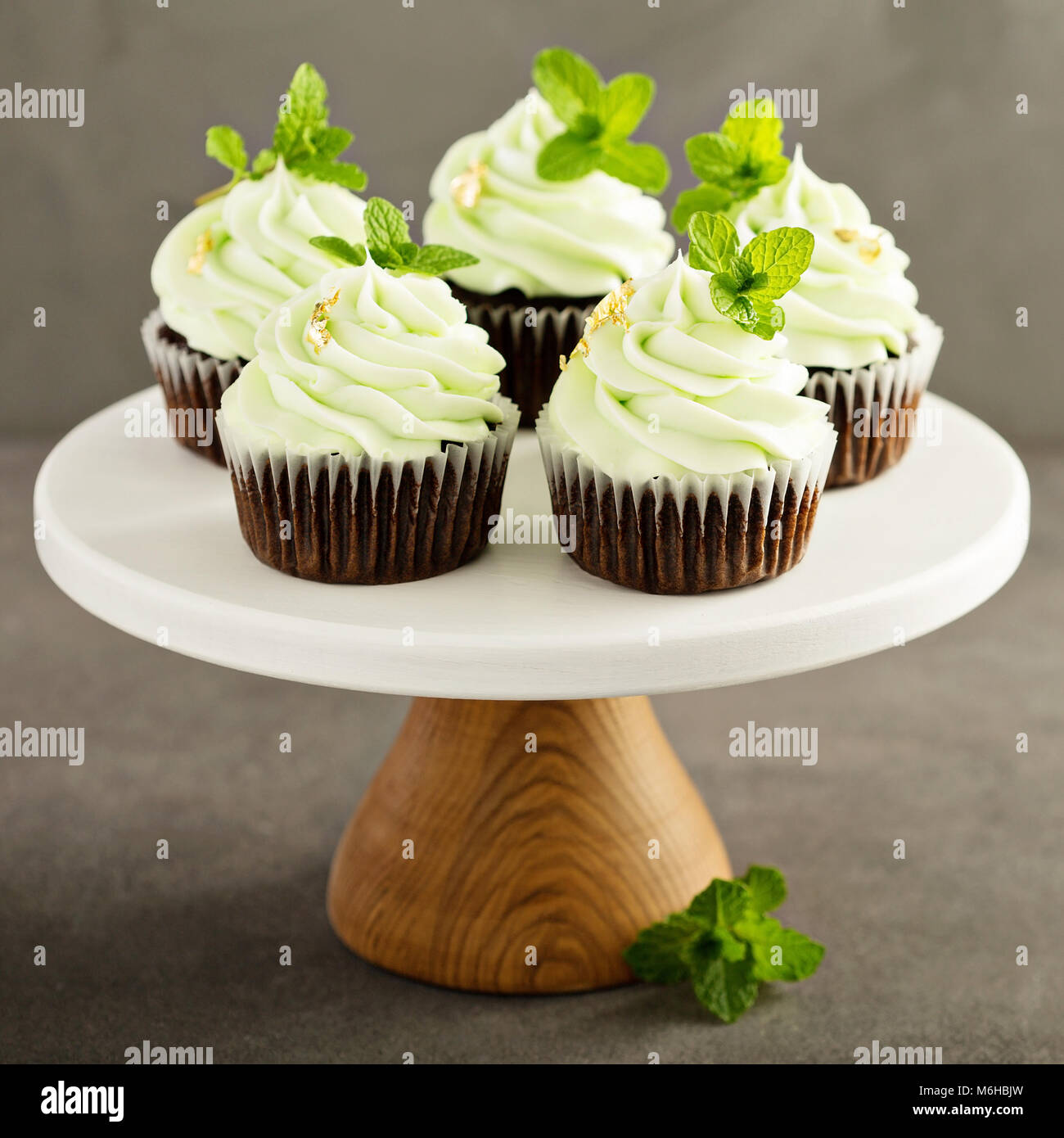 Chocolate mint cupcakes with green frosting - Stock Image