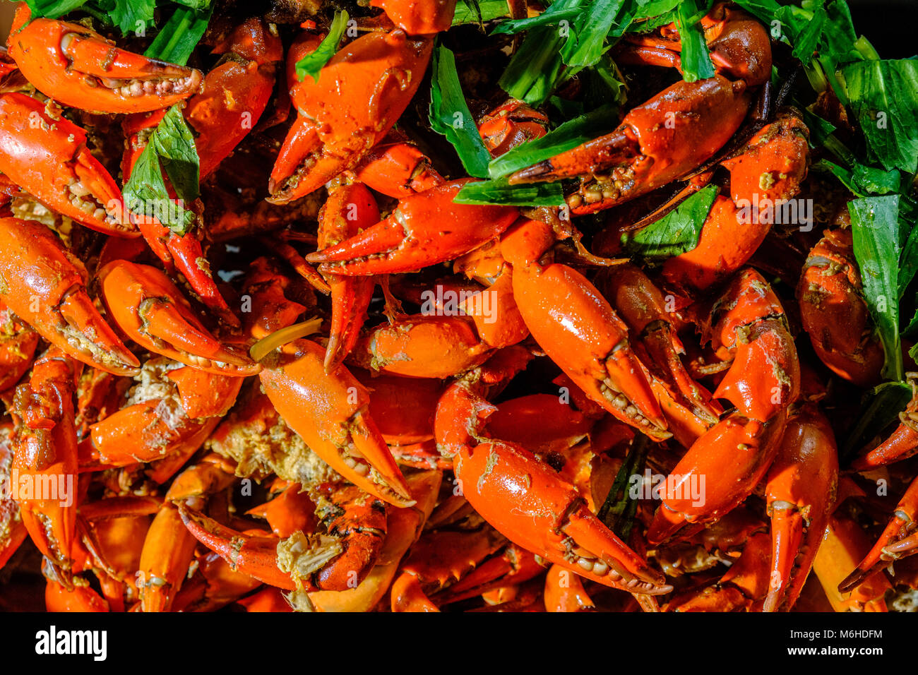 Boiled lobsters are offered to eat in illuminated street restaurants at night in the centre of town - Stock Image