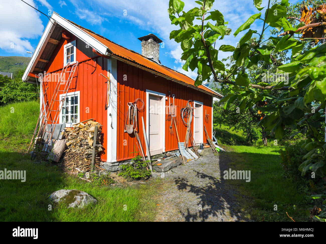 red shed and fruit tree, Norway, orchard in the village Balestrand, Esefjord, Sognefjord - Stock Image