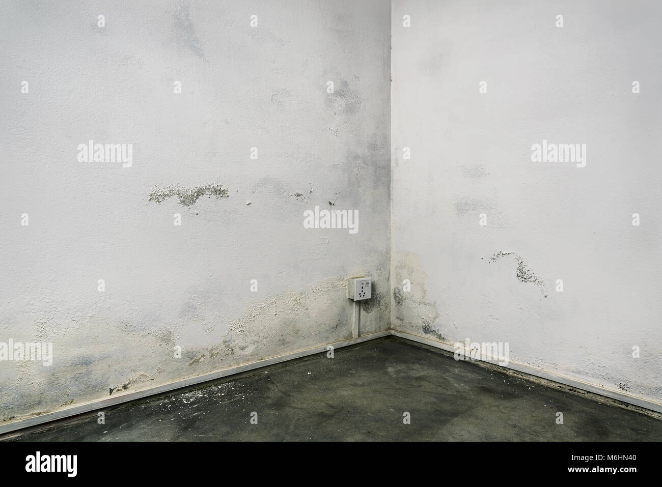 Grungy room corner with concrete floor and white walls damaged by damp - Stock Image