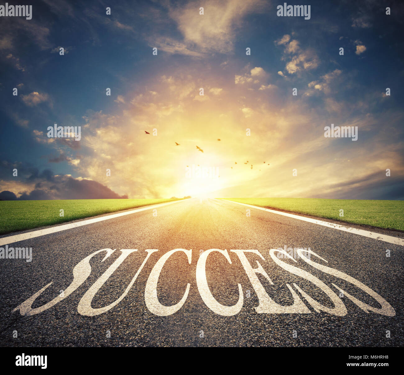 Road of the success. The way for new business opportunities - Stock Image