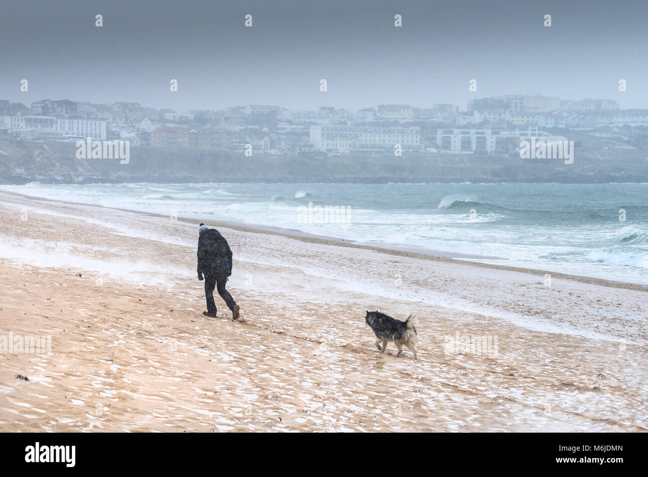 Snow falling as a man walks with his dog across Fistral beach in Newquay Cornwall. - Stock Image