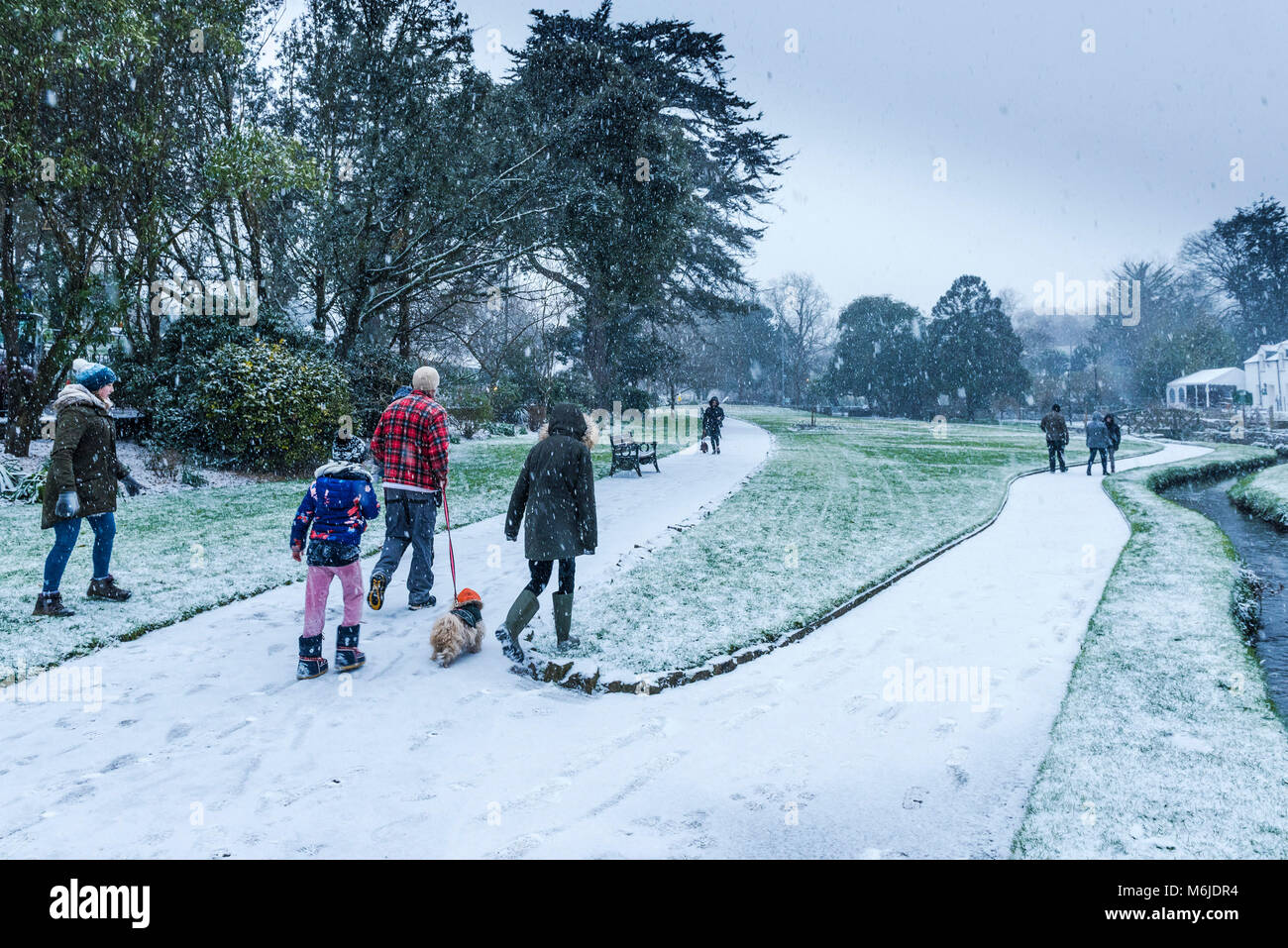 A family walking their dog through falling snow in Trenance Gardens in Newquay Cornwall. - Stock Image