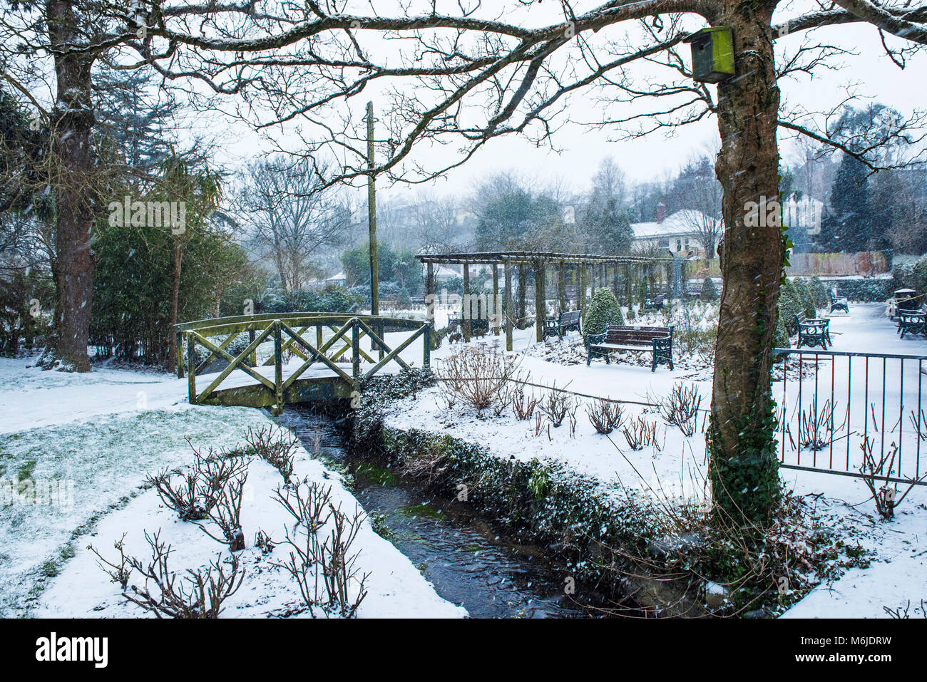 Heavy snowfall in Trenance Gardens in Newquay Cornwall. - Stock Image