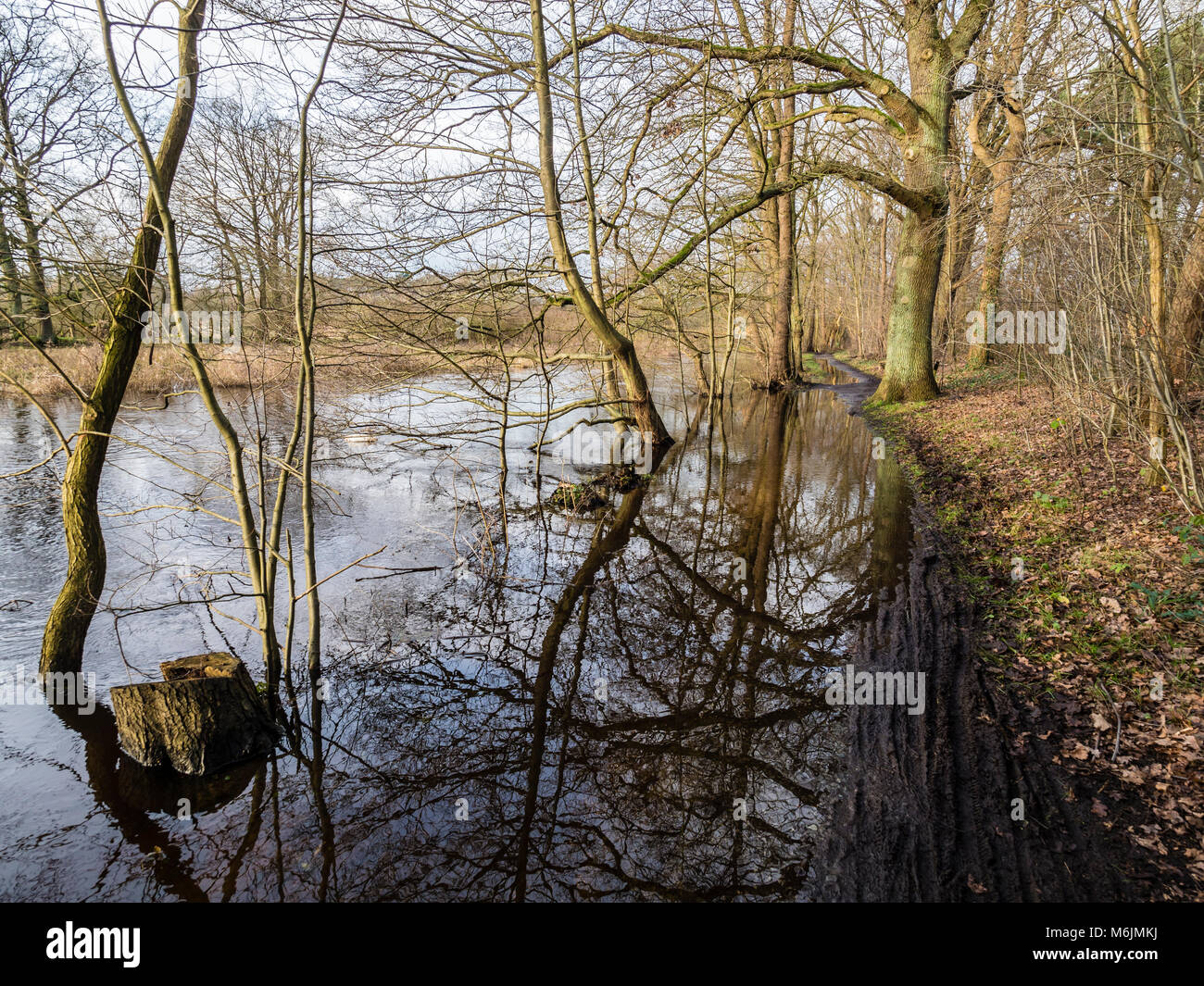 Flooded path along river Lachte, seen from bicycle, Celle, Germany Stock Photo