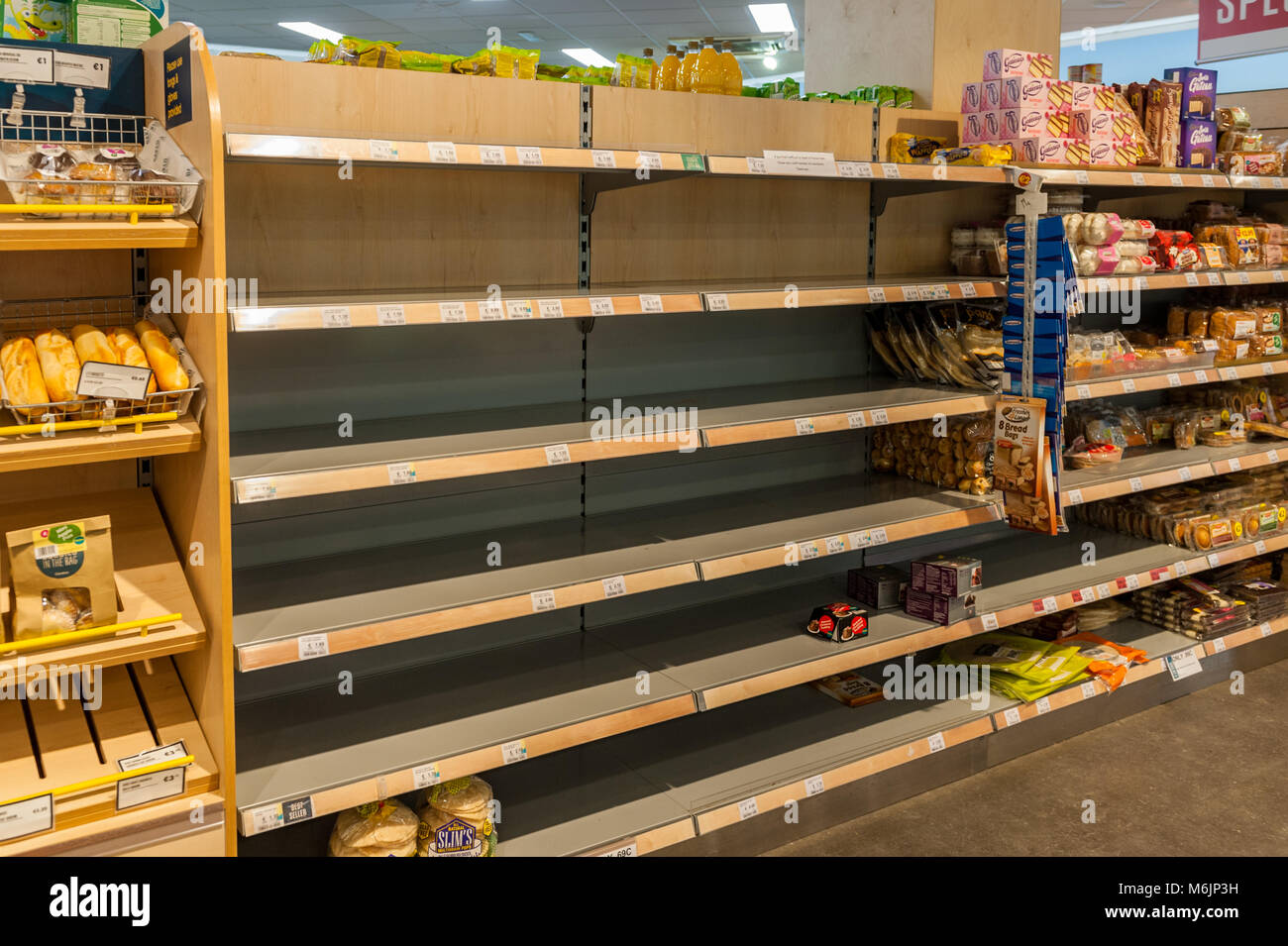 Empty bread shelves in Centra supermarket, Schull, County Cork, Ireland during Storm Emma. - Stock Image