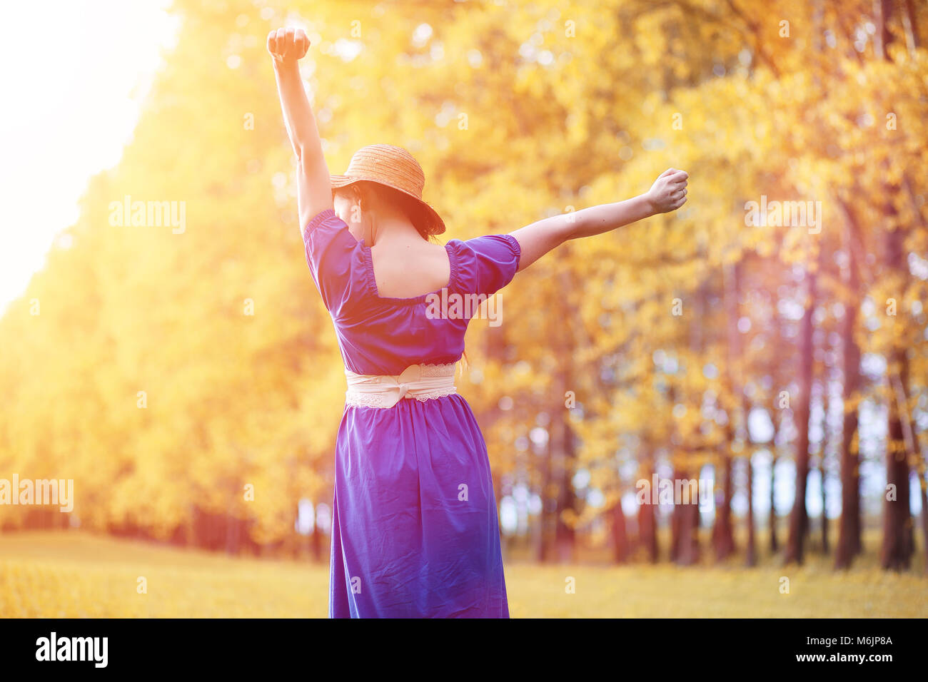 Young beautiful girl in dresses on nature. A girl in a hat walks - Stock Image