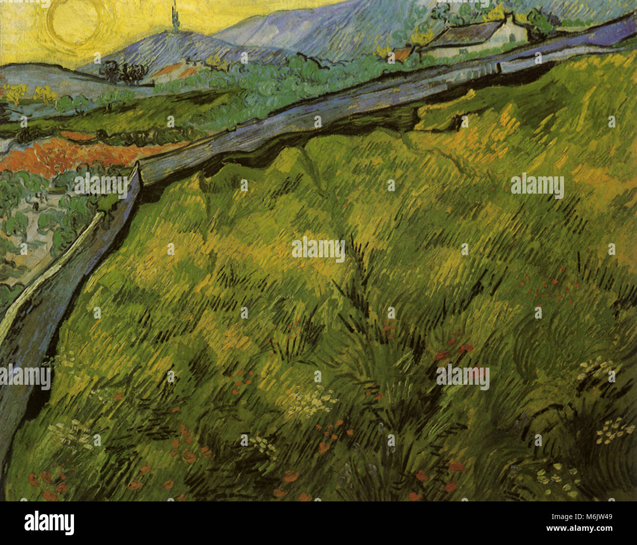 Field of Spring Wheat at Sunrise, Van Gogh, Vincent Willem, 1889. - Stock Image