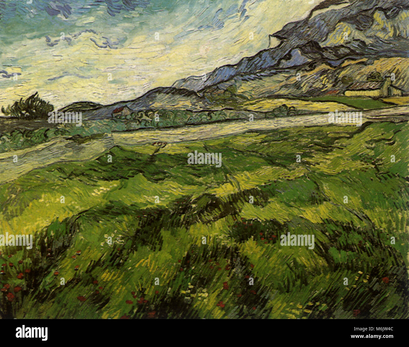 Green Wheat Field, Van Gogh, Vincent Willem, 1889. - Stock Image
