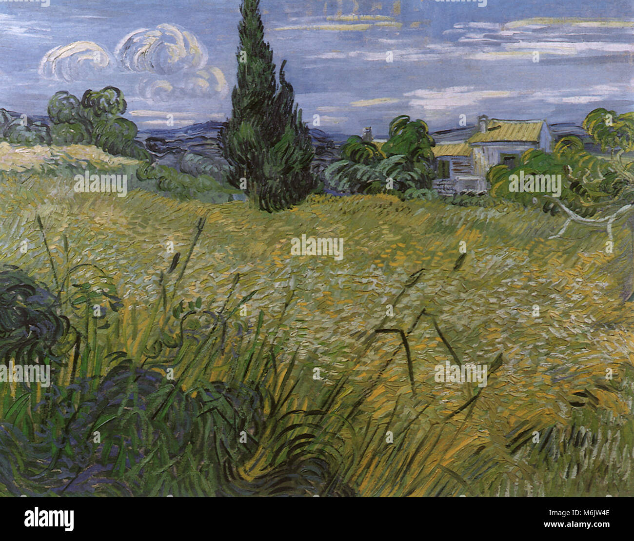 Green Wheat Field with Cypress, Van Gogh, Vincent Willem, 1889. - Stock Image