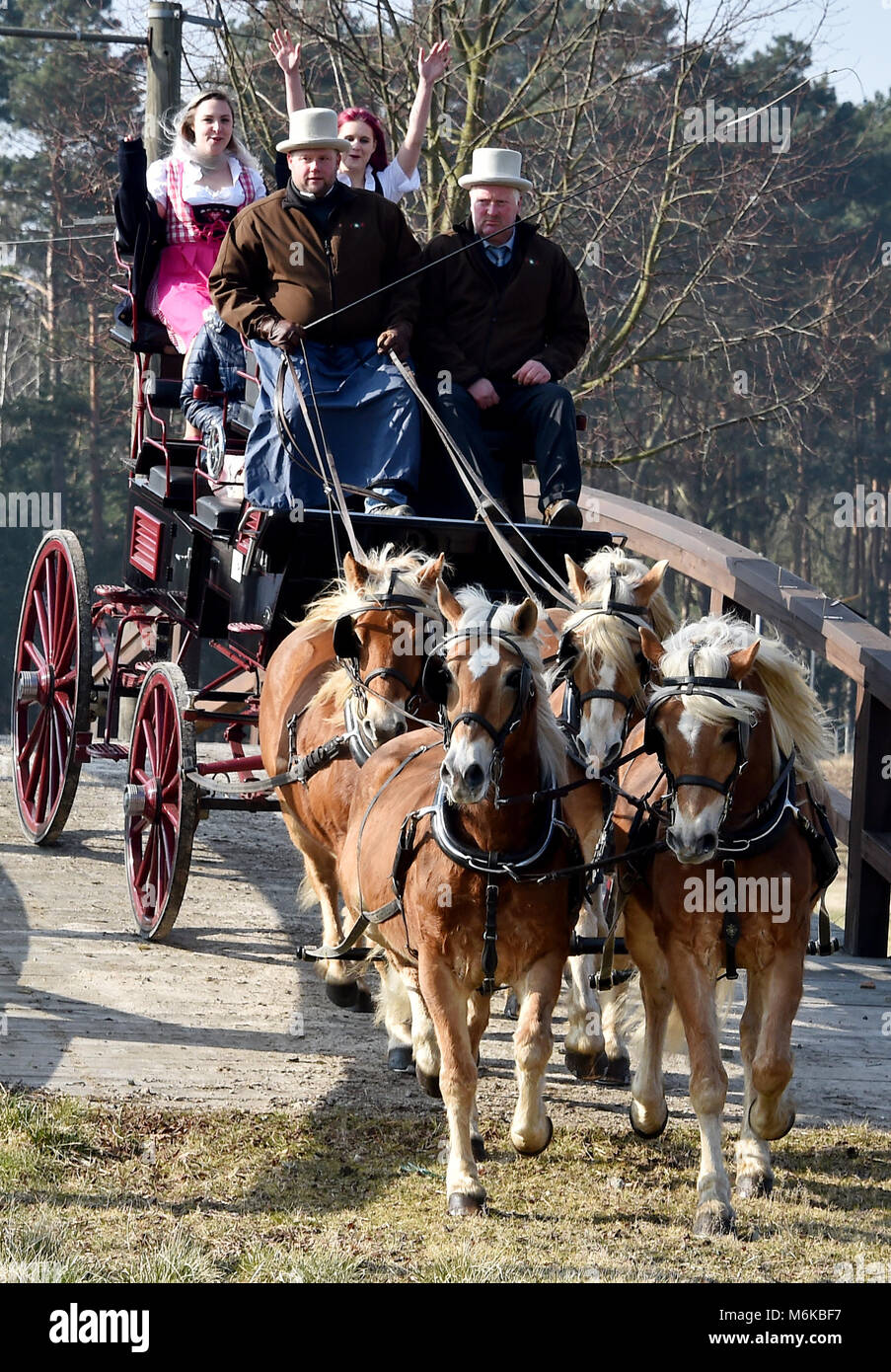 23rd February 2018, Germany, Brandenburg, Brueck: Six-horse team are driving over the course at the press conference - Stock Image