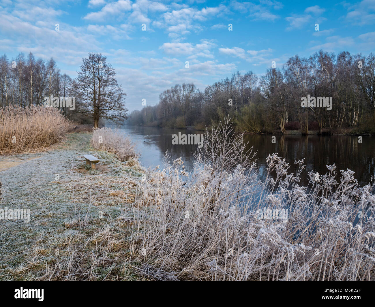 River Aller on a frozen winter day, hiking and cycling path along the river, between Celle and Altencelle, Germany Stock Photo