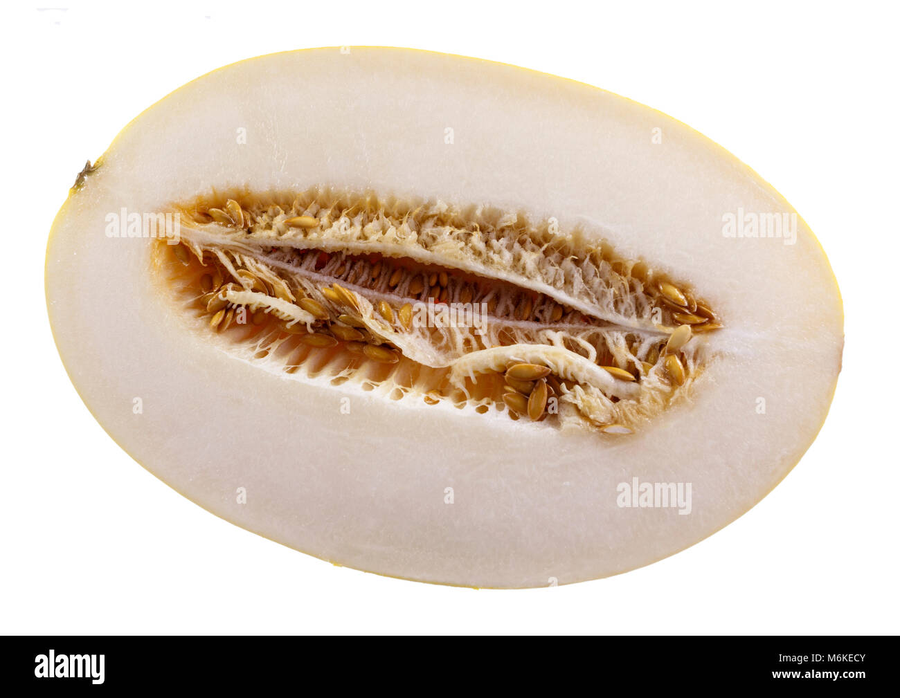 The Golden melon, also called Hello Melon, is a refreshing, crispy and crunchy fruit, with an elliptical shape, - Stock Image