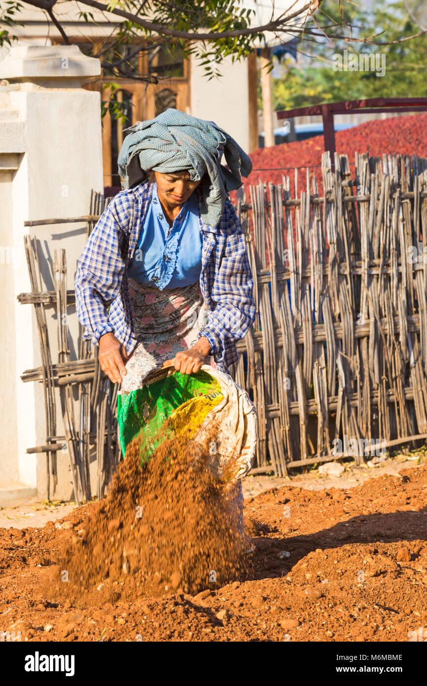 Villagers undertake manual road construction work at West Phwar Saw Village, Bagan, Myanmar (Burma), Asia in February - Stock Image