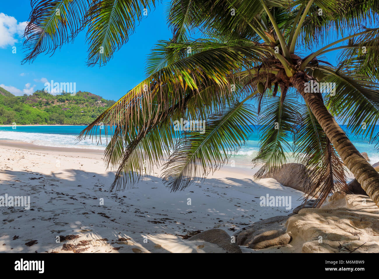 Tropical beach - Stock Image