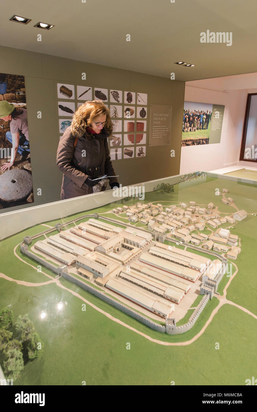 Vindolanda Museum, a visitor in the Admissions Building of the Vindolanda Museum studies a model of the Roman fort - Stock Image