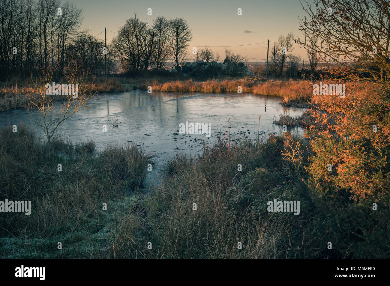 Golden dawn light breaks on a frozen pond on Wetley Moor, Staffordshire. A stark contrast to the frozen moorland - Stock Image