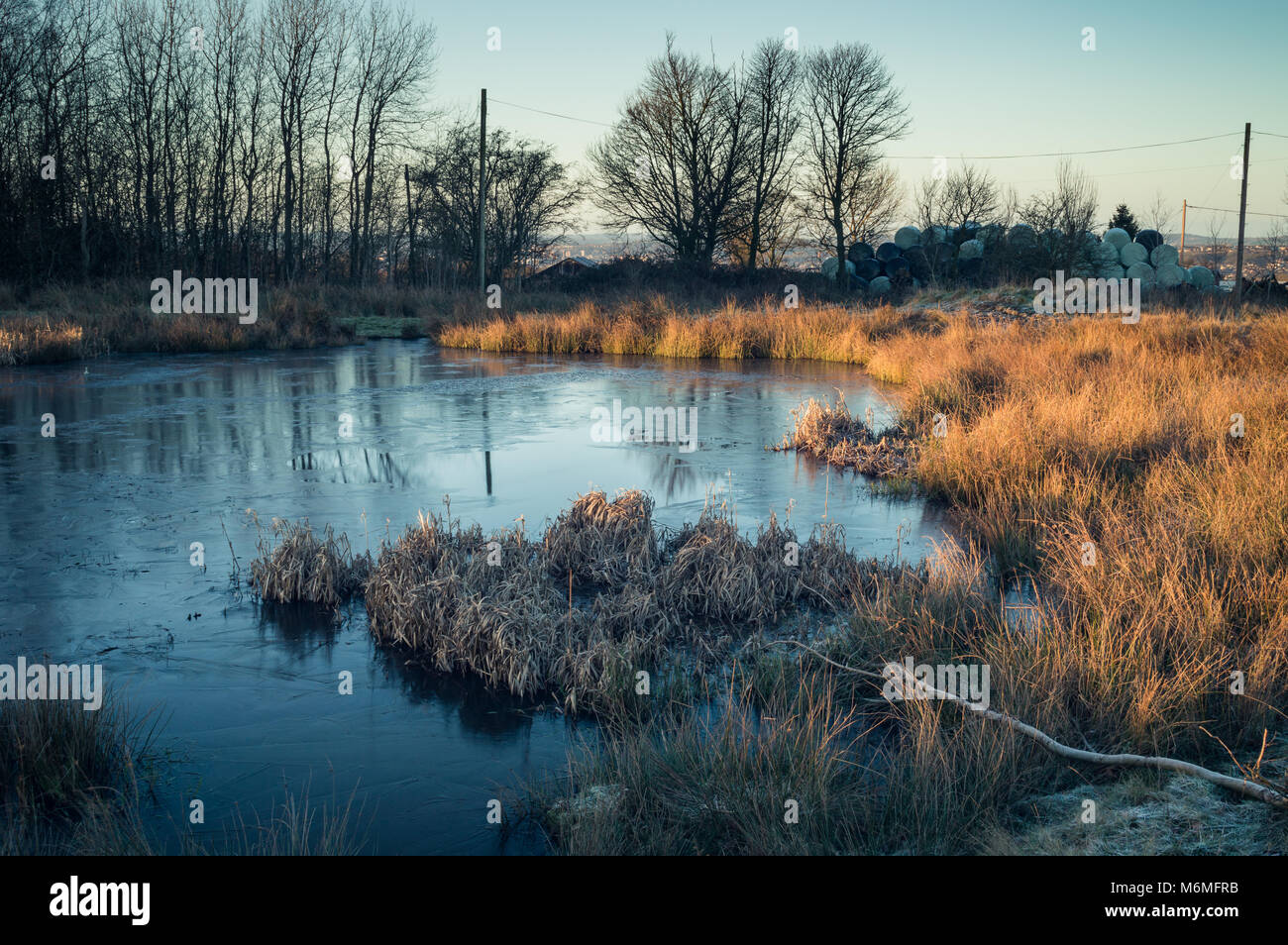 Dawn light breaking on a frozen pond on Wetley Moor Staffordshire. - Stock Image
