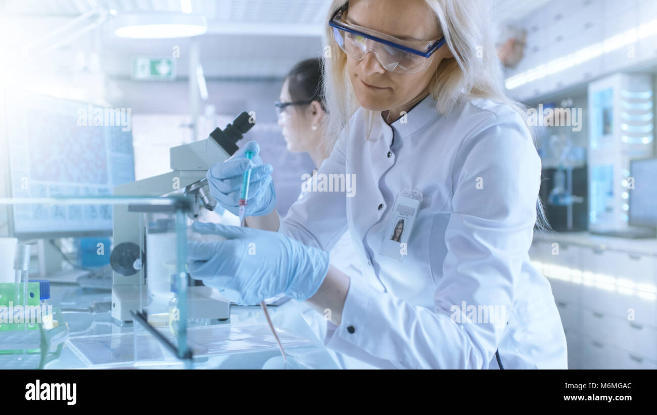 Medical Research Scientist Tests Vaccine Experimental Drug on a Laboratory Mouse Injecting it with Syringe. She - Stock Image