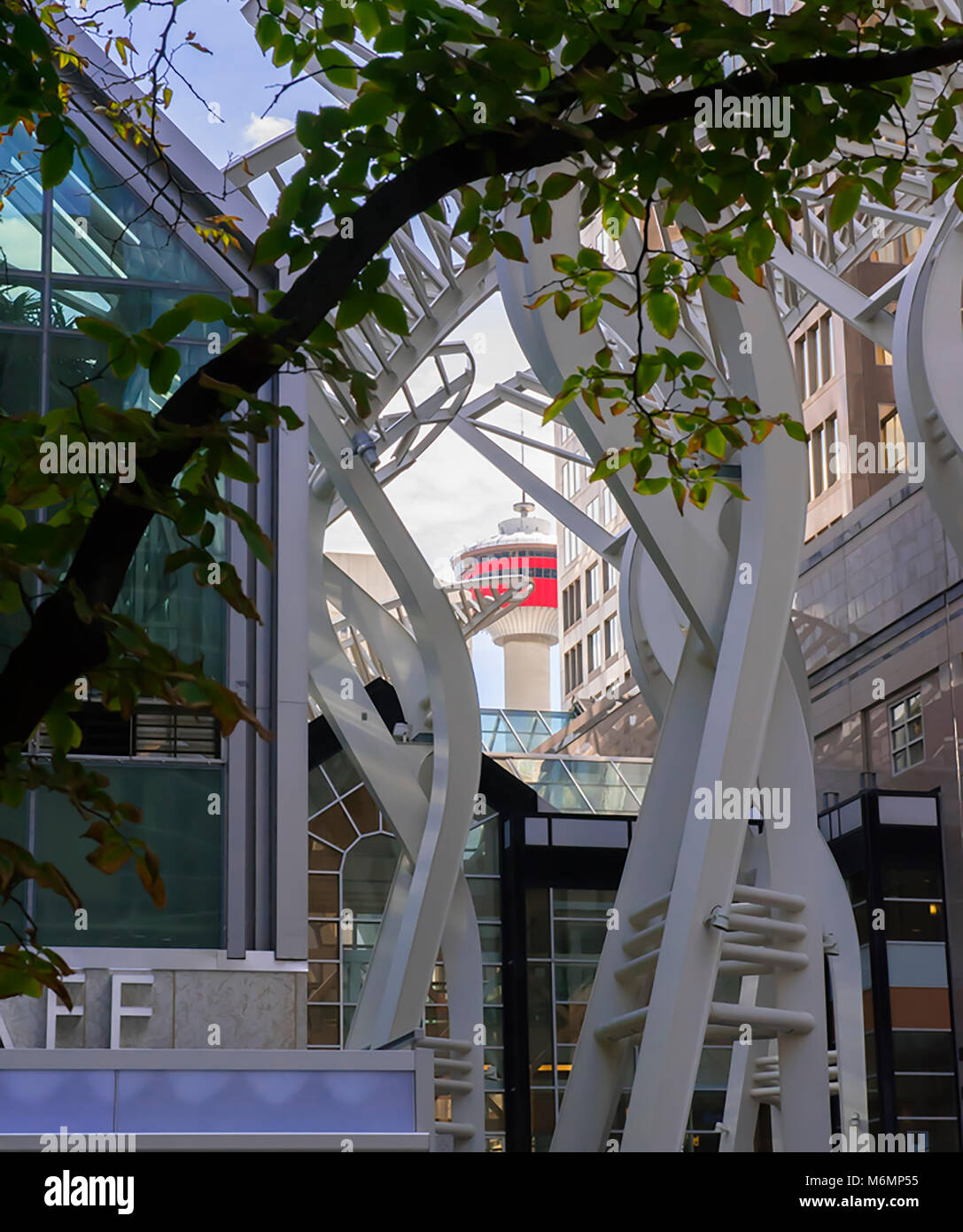 Galleria Trees sculptures with the iconic Calgary Tower shown in the distance. - Stock Image