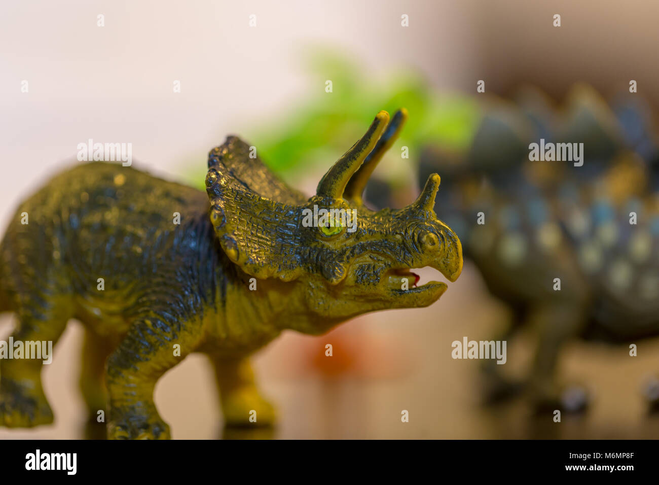 Close up photograph of small toy Triceratops in foreground focused with toy tree and stegosaurus in background out - Stock Image