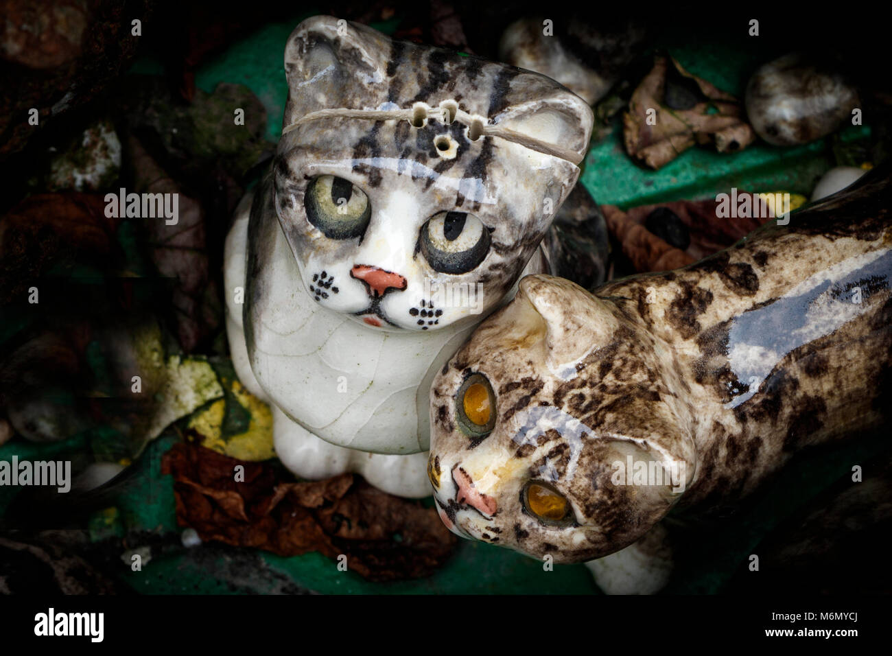 A collection of Winstanley pottery cats arranged outdoors. North Walsham, Norfolk, UK. - Stock Image