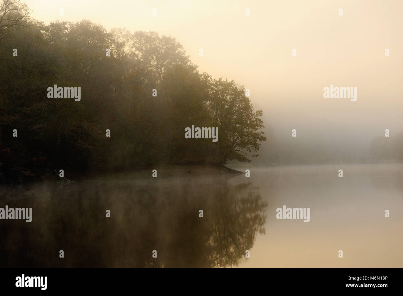 Paimpont, also known as the Forest of Broceliande: the Blue Pond (pond of Paimpont) - Stock Image