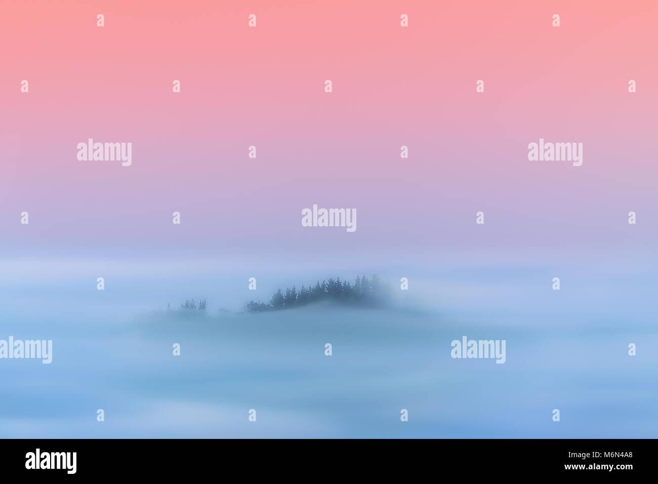 dreamy magic landscape of hazy forest - Stock Image