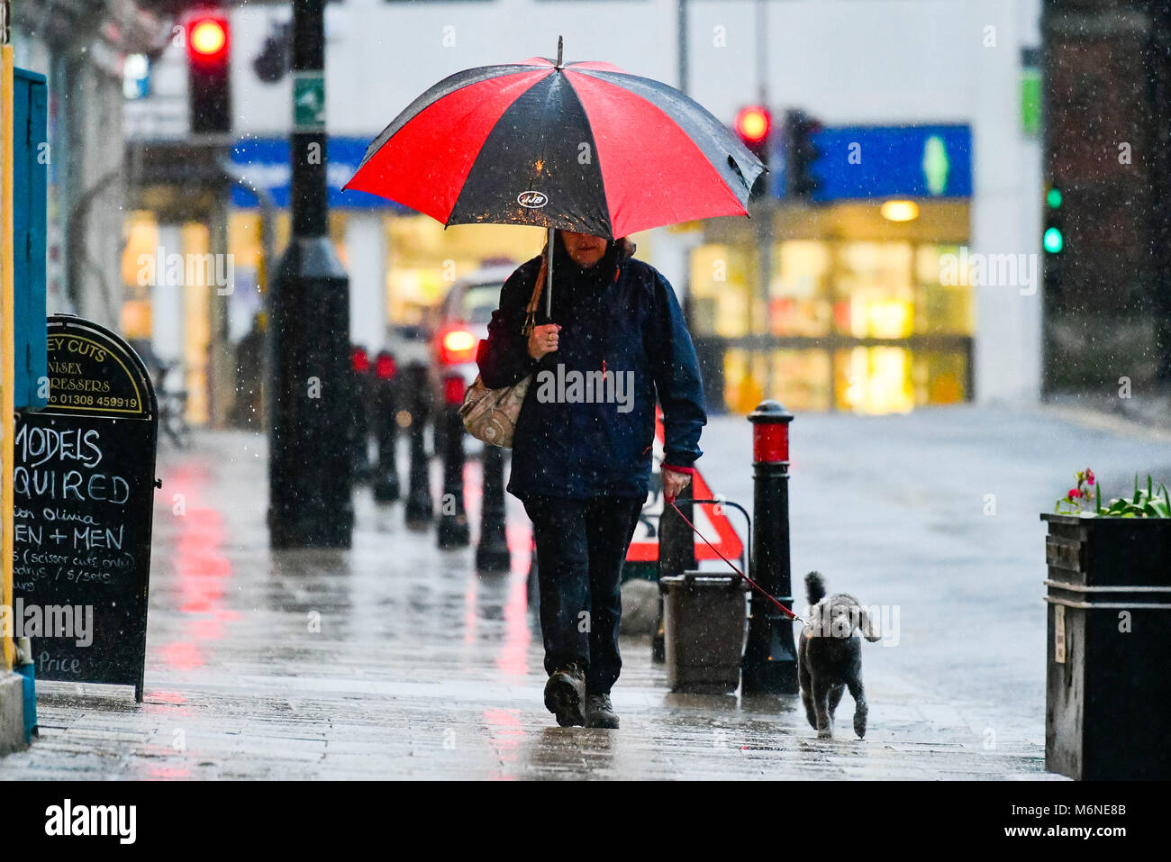Bridport, Dorset, UK.  5th March 2018.  UK Weather.  A dog walker walking in the pouring rain with an umbrella in Stock Photo