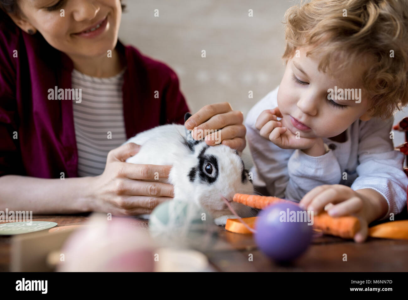 Little Boy Feeding Pet Bunny - Stock Image