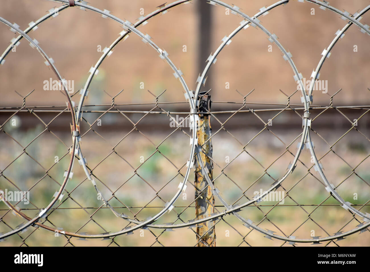 Barbed razor wire in Pretoria South Africa used as steel fencing constructed with sharp edges or points utilized - Stock Image