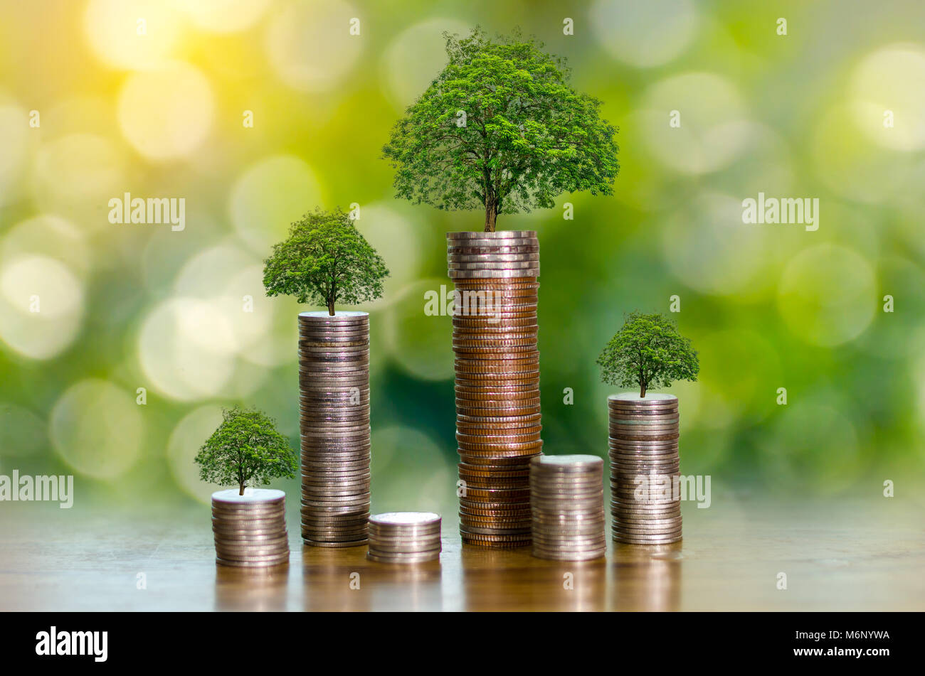 hand Coin tree The tree grows on the pile. Saving money for the future. Investment Ideas and Business Growth. Green - Stock Image