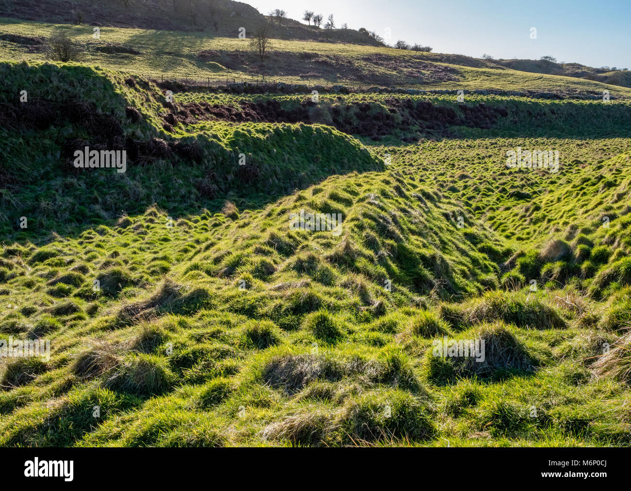 Remains of lead mining spoil heaps known locally as gruffy ground at Velvet Bottom near Charterhouse in the Mendip - Stock Image