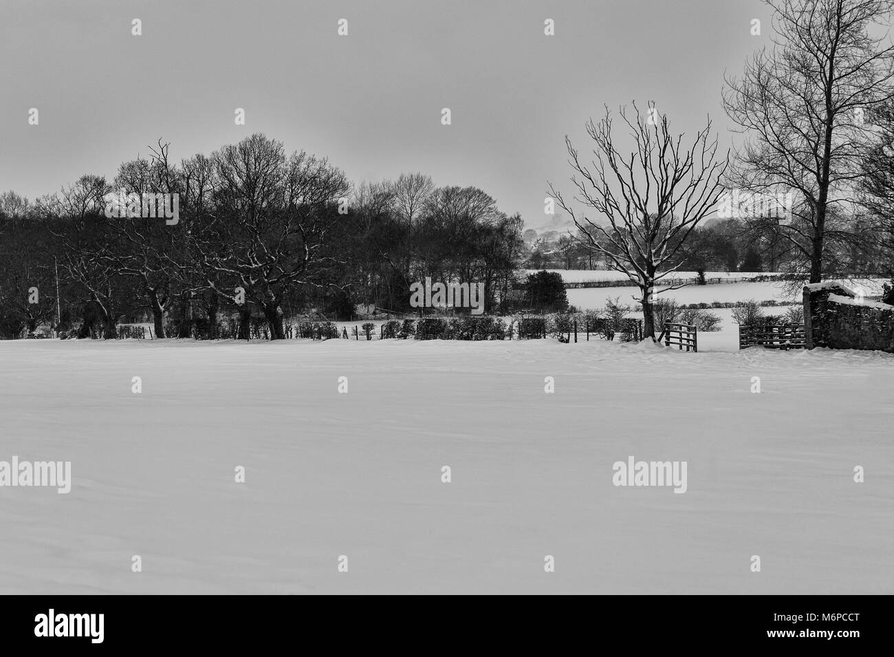 After the beast from east hits County Durham the fields and the surrounding countryside are covered in a heavy blanket - Stock Image