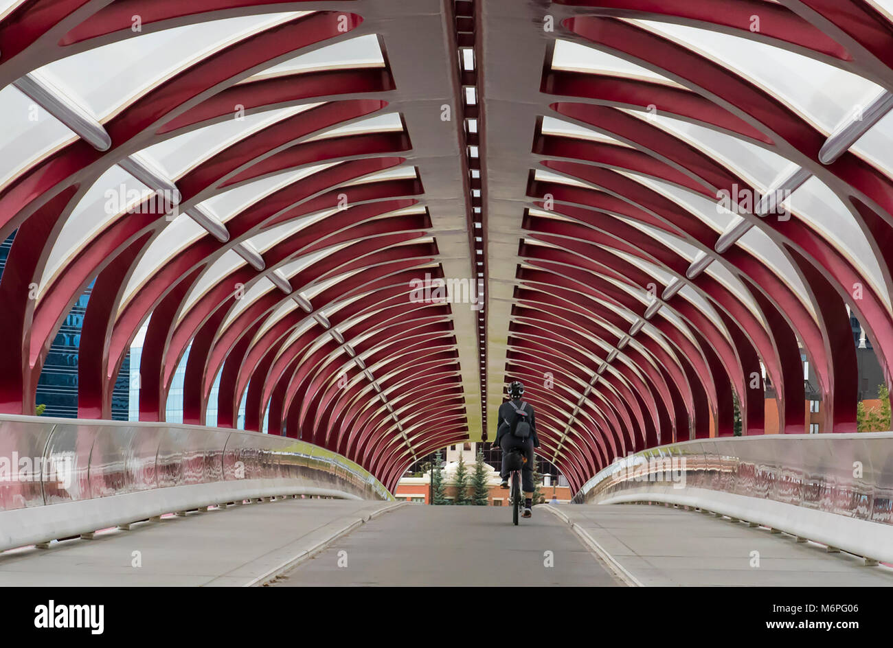 A commuter cycles towards downtown through the Peace Bridge which spans the Bow River, Calgary, Canada. - Stock Image
