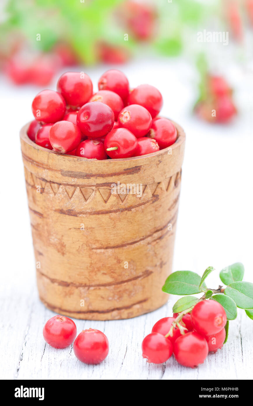 macro  image of fresh cowberry in the old wooden cup - Stock Image