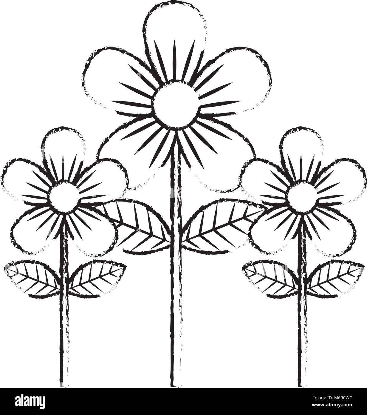 Beauty Flowers Decoration Leaves Stem Petals Vector Illustration Stock Vector Image Art Alamy