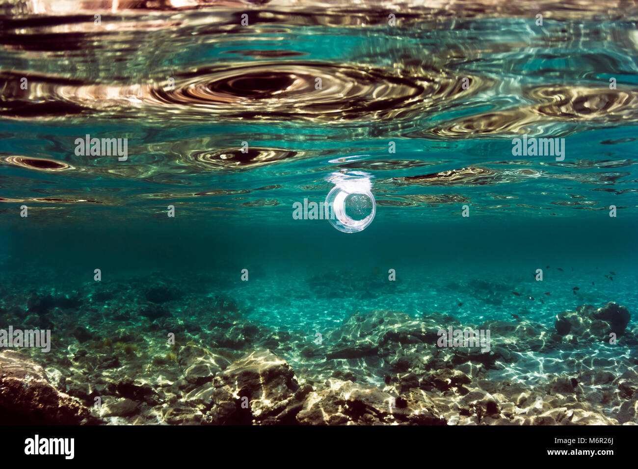 Transparent plastic cup floating just under the surface of the sea, rocks reflecting golden sunlight, plastic pollution - Stock Image