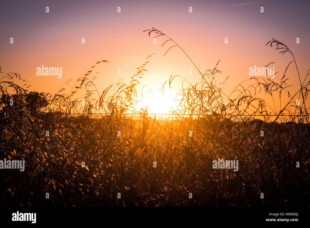 No sunest like home - Stock Image