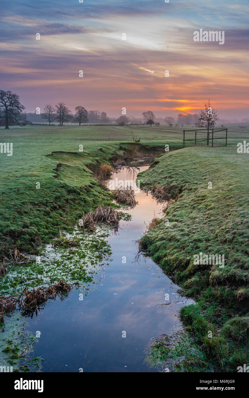 Dawn at Wistow, Leicestershire. - Stock Image