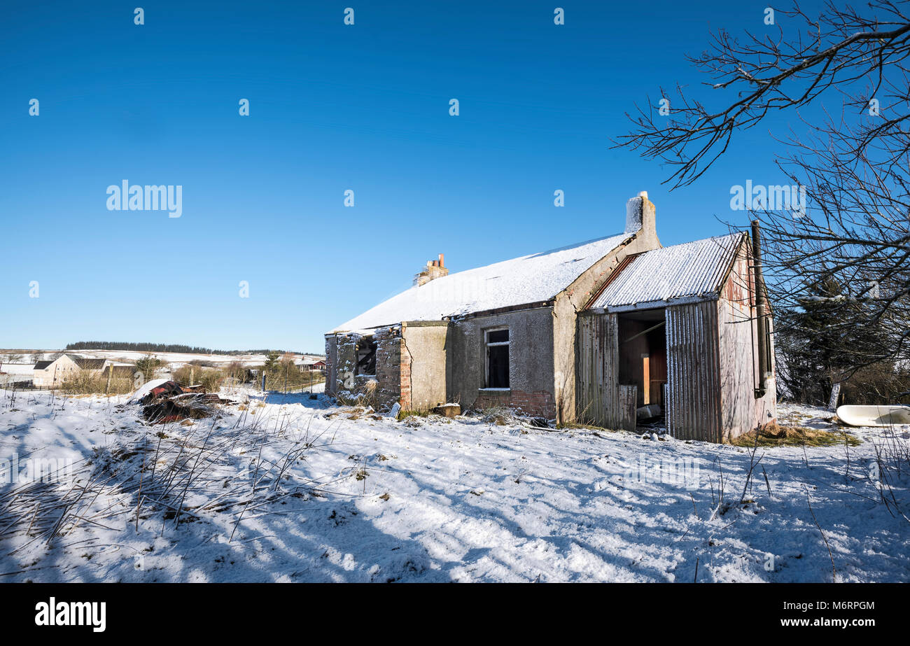 Derelict Cottage in countryside close to Wilsontown, Forth, Lanarkshire, Scotland - Stock Image