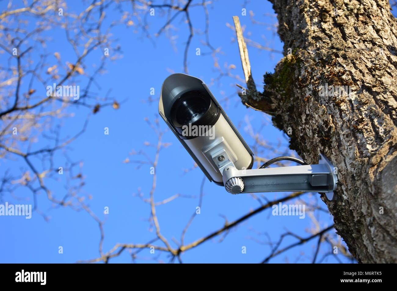 Zoom on a video surveillance camera with blue sky background Stock Photo